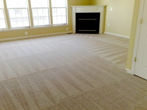 carpet-cleaning-hq